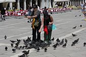 People with pigeons all around in St.Mark Square in Venice