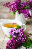 stock photo of flower pots  - Lilac flowers in a pot and cup of tea in rustic interior - JPG
