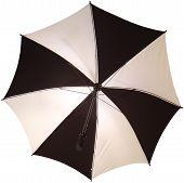 Open Umbrella / Brolly