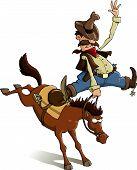 Cowboy Loser