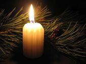 Pine Bough And Candle