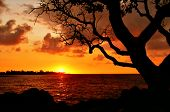 Sunset on the Big Island. Hawaii. USA