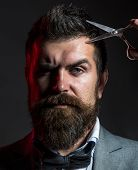 Male In Barbershop, Haircut, Shaving, Mans Haircut In Barber Shop Portrait Of Stylish Beard Man, Sci poster