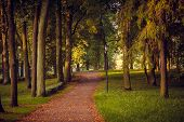 Morning Autumn Park. Picture Autumn Park. Park At Sunrise In The Fall. Sunny Morning. Beginning Of A poster