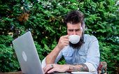Good Morning Virtual World. Hipster Enjoying Coffee And Free Wifi In Morning. Bearded Man Drinking M poster