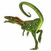 Masiakasaurus Dinosaur Tail 3d Illustration - Masiakasaurus Was A Carnivorous Theropod Dinosaur That poster