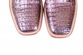 Close Up Of A Pair Of Caiman Leather Boots Isolated On White poster