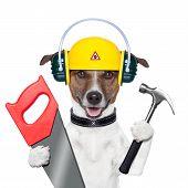 Постер, плакат: Разнорабочий собака
