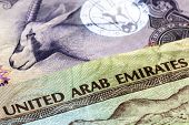 stock photo of dirhams  - United Arab Emirates dirham banknotes in closeup - JPG