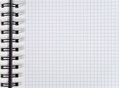 White Squared Notebook Sheet