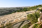 Ancient Jewish Cemetery On The Mount Of Olives In Jerusalem