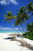 Beach Of Aitutaki, Beautiful South Pacific