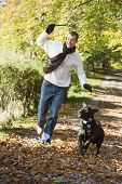 Man Throwing Stick For Dog In Woodland poster