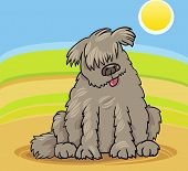 picture of newfoundland puppy  - Cartoon Illustration of Funny Purebred Newfoundland Dog or Labrador Doodle or Briard against Blue Sky and Fields - JPG