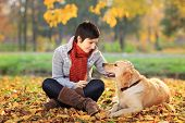 stock photo of golden retriever puppy  - Young woman in a park stroking her retriever dog - JPG