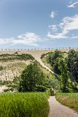 Highest Dune On The Curonian Spit