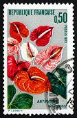 Postage Stamp France 1973 Anthurium, Flamingo Flower