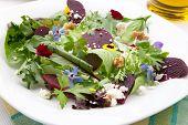 Beets And Baby Greens Salad