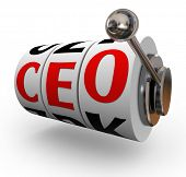 Searching for a good quality chief executive officer or CEO can be like pulling a handle on a slot m