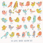 Set of 33 cute birds in vector. Cartoon collection with funny little bird family.