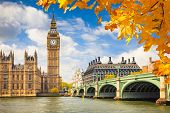 stock photo of illuminated  - Big Ben with autumn leaves - JPG