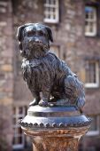image of bobbies  - The statue of Greyfriars Bobby a famous Terrier in Edinburgh - JPG