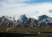 pic of denali national park  - The rugged - JPG