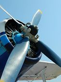 The blue propeller
