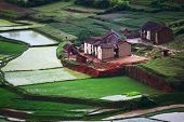 Green hills with red soil, green rice and villages with traditional houses. Madagascar