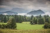 Farmland in the Bavarian Alps.