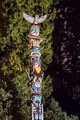 stock photo of totem pole  - Totem Pole in Stenley Park Vancouver night time