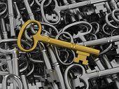 Unique Golden Key
