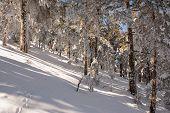 Snow in navacerrada madrid spain