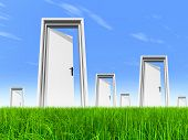 High resolution green, fresh and natural 3d conceptual grass over a blue sky background and opened doors at horizon ideal for religion, home, recreation, faith, business, success,opportunity or future