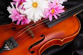 Classical violin on fabric background