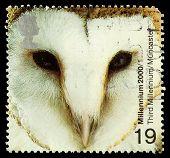 Britain Barn Owl Postage Stamp