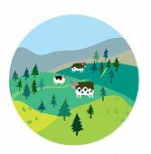 Cows and landscape illustration