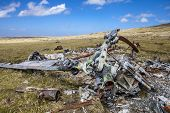 picture of falklands  - Falkland Island - JPG