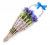 Beautiful bouquet of cornflowers in basket, isolated on white