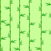 Bamboo Seamless Background. Bamboo Background. Vector Illustration.