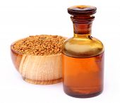 picture of fenugreek  - Fenugreek seeds with oil over white background - JPG