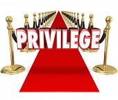 Постер, плакат: Privilege word in red 3d letters on a red carpet to illustrate exclusive celebrity VIP access to a s