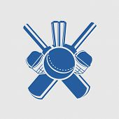 Cricket sports concept with bats, ball, wicket stumps and helmets on grey background.