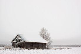 stock photo of barn house  - An abandoned barn house after snow fall - JPG