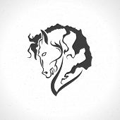 picture of horse face  - Horse face logo emblem template mascot symbol for business or shirt design - JPG