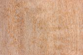 stock photo of formica  - The surface of the plywood with natural patterns - JPG