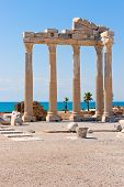 pic of artemis  - Ruins of the ancient  apollon temple in Side - JPG