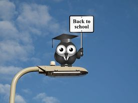 picture of lamp post  - Comical bird teacher with back to school sign sat on a lamp post against a blue sky background - JPG