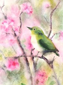 picture of wet  - Water color illustration of a small green bird sitting on a branch - JPG