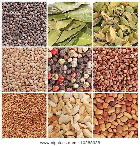 Постер, плакат: Зерно и специи, холст на подрамнике